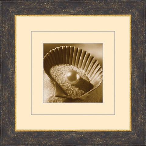 "Seashells in Sepia A 15 1/2"" Square Wall Art"