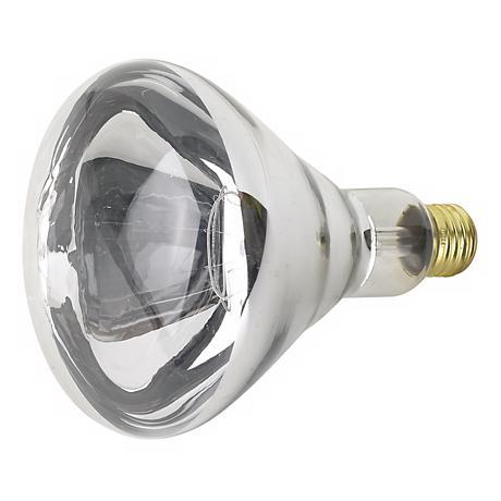 250 Watt R40 Heat Lamp Light Bulb
