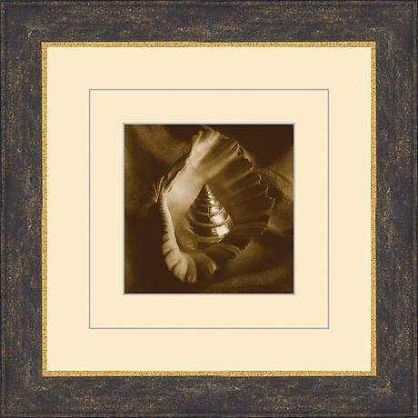 "Seashells in Sepia D 15 1/2"" Square Wall Art"