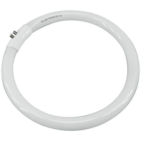 "Cool White 22 Watt  T5 8"" Circline Fluorescent Light Bulb"
