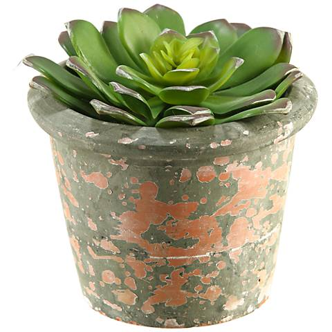 "Echeveria 5 3/4"" High Faux Plant in Terra Cotta Planter"