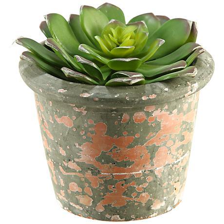 "Echeveria 5 3/4"" High Faux Plant in Terra Cotta Planter"