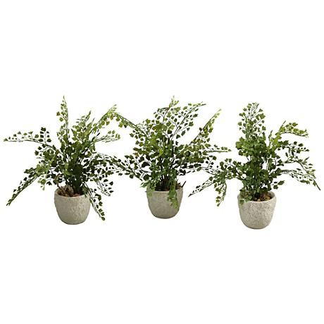 """Maiden Hair Fern 14"""" High Faux Plant in Vase Set of 3"""