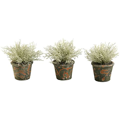 "Santolinia Bush 10"" High Faux Plant in Pot Set of 3"
