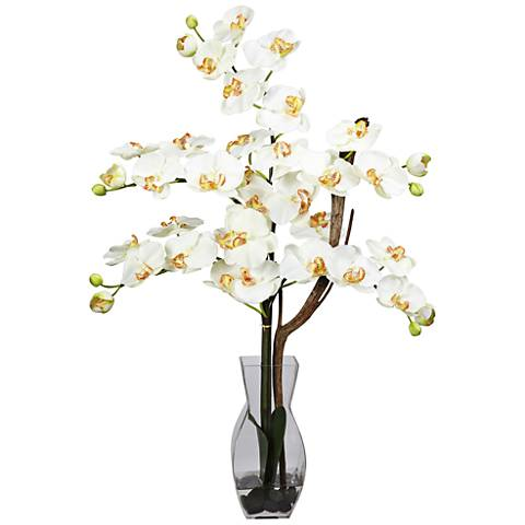 "Cream Phalaenopsis Orchid 29""H Faux Flowers in Glass Vase"