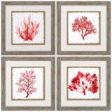"""Red Coral 21"""" Square 4-Piece Framed Wall Art Set"""