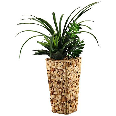 """Green Areca Grass and Succulents 33""""H in Tall Square Basket"""