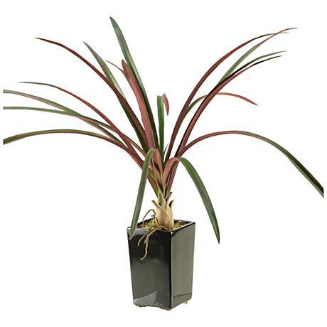 "Burgundy and Green Areca Grass 24"" High in Ceramic Planter"