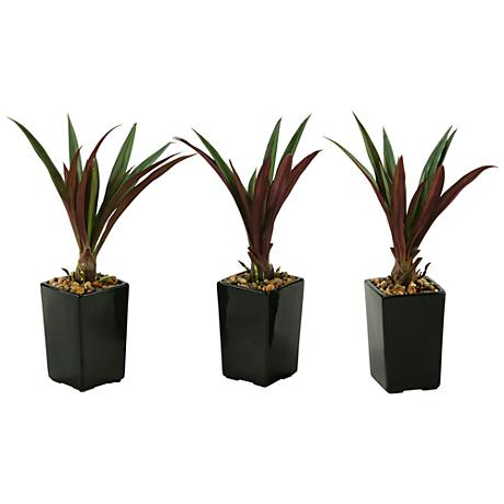 """Green and Burgundy Lily Grass 16""""H in Set of 3 Planters"""
