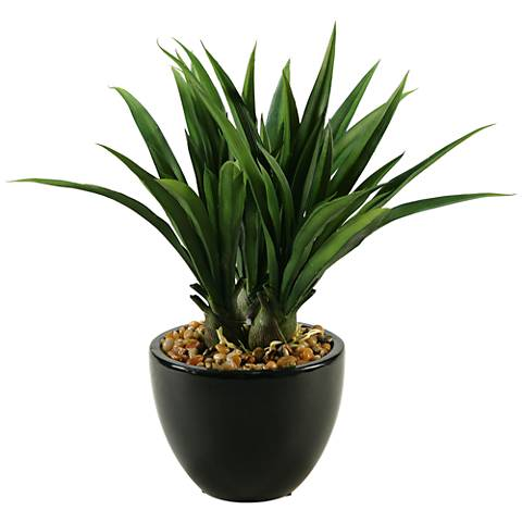 "Green Lily Grass 16"" High in Ceramic Bowl Planter"