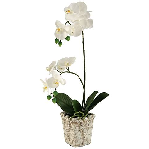 "Cream Orchids 23"" High in Crackle Ceramic Planter"