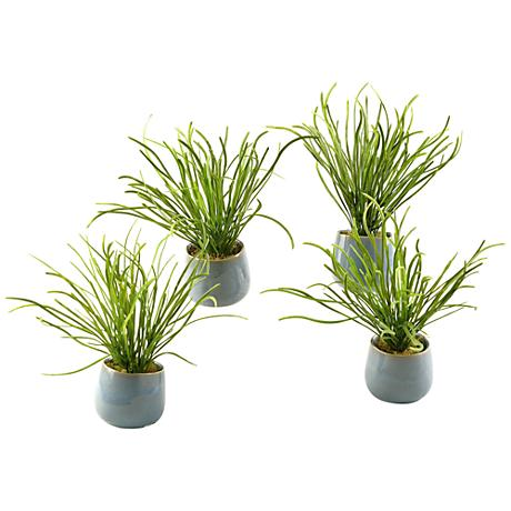 """Green Pearl Grass 10 1/2""""H in Set of 4 Small Ceramic Planters"""