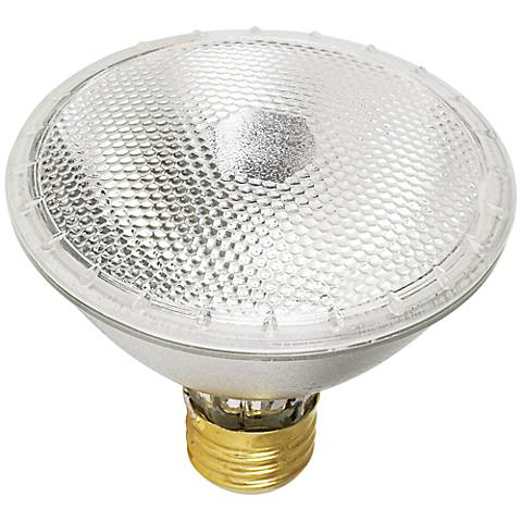 Tesler 55 Watt PAR30 Flood Light Bulb