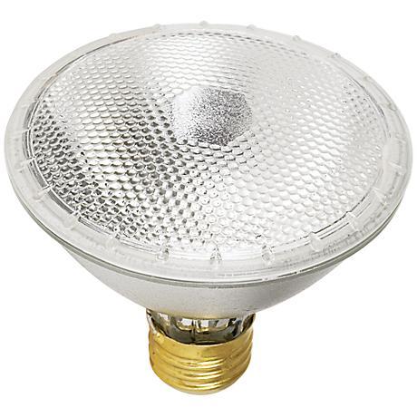 Tesler 55 Watt PAR30 Flood Light Bulb