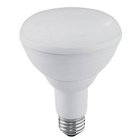 65W Equivalent Frosted 12W LED Dimmable Standard BR30 Bulb
