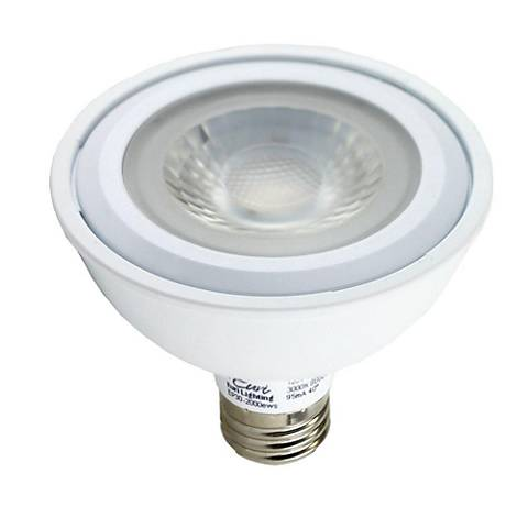 75W Equivalent Frosted 13W LED Dimmable Standard PAR30 Bulb