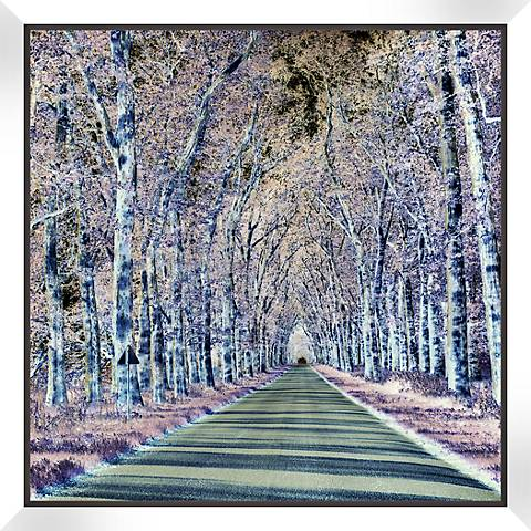 "Forest Walkway 22"" Square Giclee Wall Art"