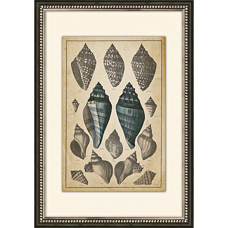 """Sepia Seashells II 26 1/2"""" High Giclee Wall Art"""