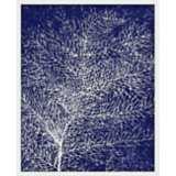 "Coral II 21"" High Abstract Giclee Silkscreened Wall Art"