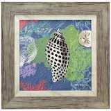 """Shells on Ocean Blue 18"""" Square Framed Coastal Wall Art"""