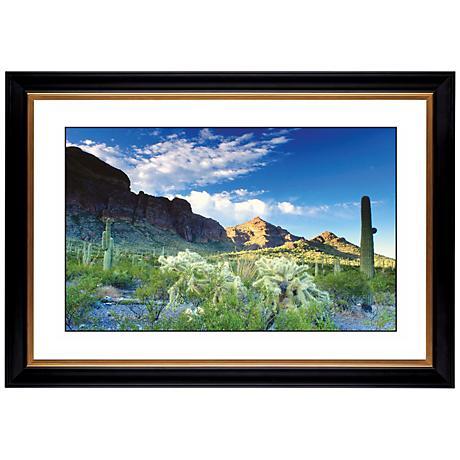 "Cactus Field Giclee 41 3/8"" Wide Wall Art"