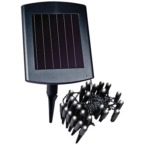 Black Outdoor Solar Powered LED Plant or Border Lights
