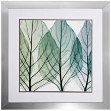 "Celosias Leaves II 30"" Square Framed Leaf Wall Art"