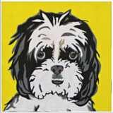 "Cute Pet IX 16"" Square Framed Giclee Wall Art"