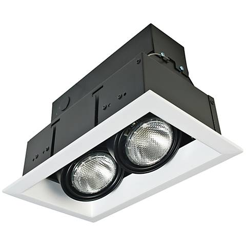 Eurofase White/Black Double Par 20 Recessed Light