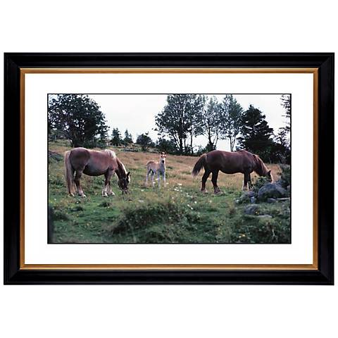"Horses Giclee 41 3/8"" Wide Wall Art"