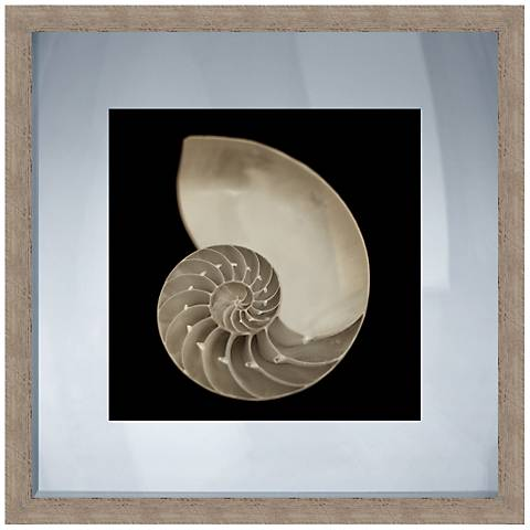 """Nautilus Black and White Shell 20"""" Square Giclee Wall Art"""