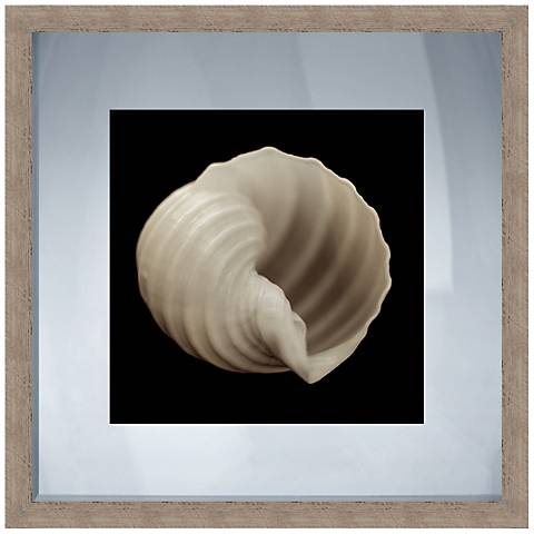 """Black and White Shell II 20"""" Square Giclee Wall Art"""