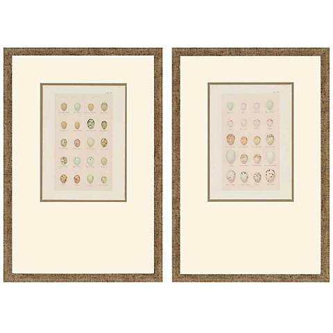 "Set of 2 Egg Study 21"" High Framed Wall Art"