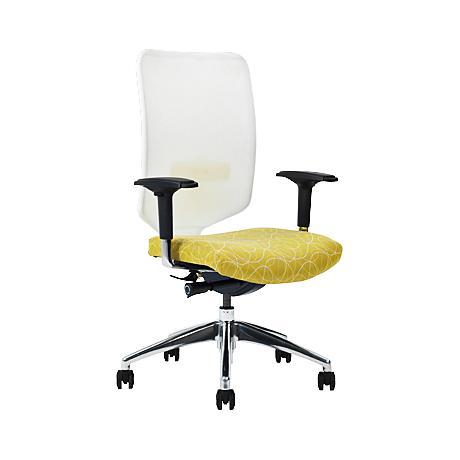 Newair High-Back Spring Vision Ergonomic Task Chair
