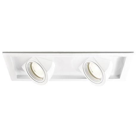 WAC Tesla LED Double 40 Degree Recessed Trim with Housing