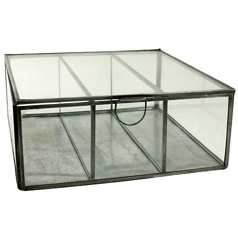 Pierre Square Clear Glass Divided Case