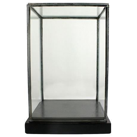 Pierre Medium Clear Glass Showcase with Black Wood Base