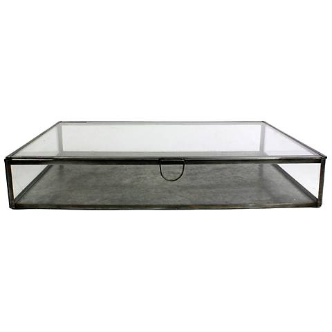Pierre Large Rectangle Clear Glass Case