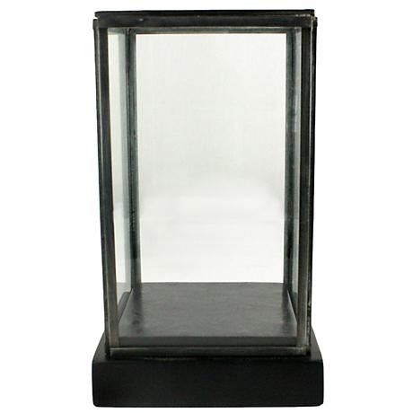 Pierre Small Clear Glass Showcase with Black Wood Base