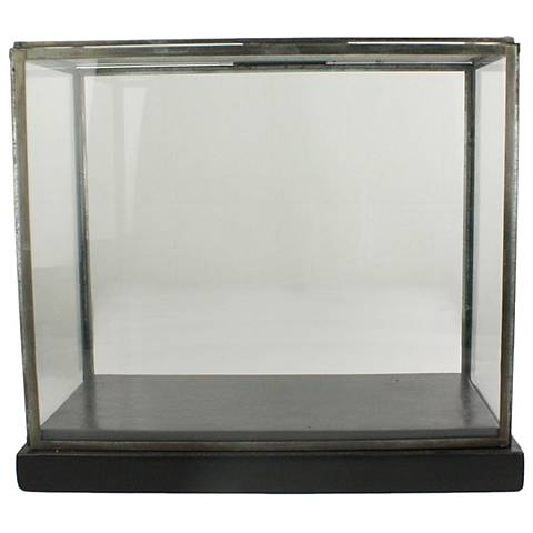 Pierre Large Clear Glass Showcase with Black Wood Base