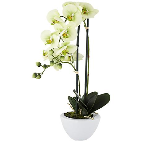 Light Green Phalaenopsis Faux Orchid in White Ceramic Pot