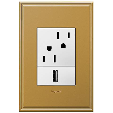adorne Antique Bronze 1-Gang+ Cast Metal Wall Plate with Outlets