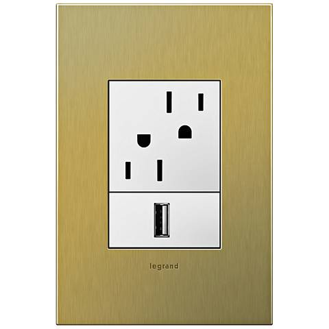 adorne Brushed Brass 1-Gang+ Cast Metal Wall Plate with Outlets