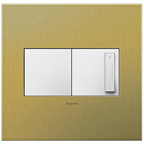 Brushed Brass 2-Gang Cast Metal Wall Plate with Switch and Dimmer