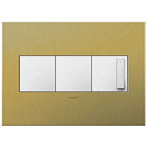 Brushed Brass 3-Gang Metal Wall Plate with 2 Switches and Dimmer