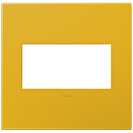 adorne® Honey 2-Gang Snap-On Wall Plate
