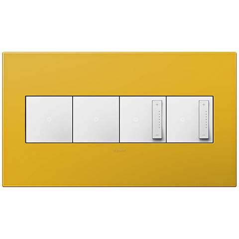 adorne Honey 4-Gang Wall Plate w/ 2 Switches and 2 Dimmers