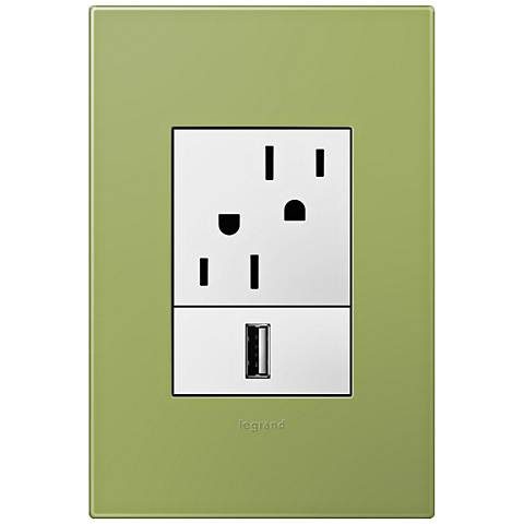 adorne Lichen Green 1-Gang+ Wall Plate w/ Outlets