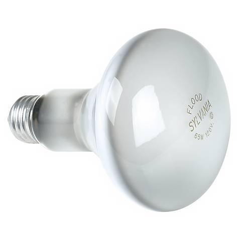 Sylvania 65-Watt BR-30 Flood Light Bulb