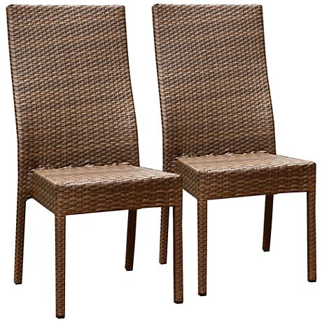 Palisades Brown Wicker Outdoor Dining Chairs Set of 2